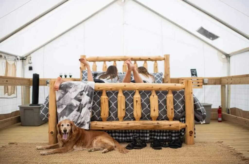 kids and a dog in a tent